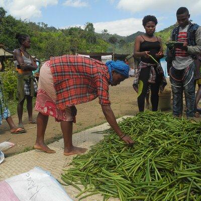 Premier marché de vanille à Ambodimandresy Andapa | © Helvetas