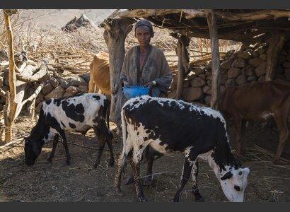Äthiopische Kleinbäuerin aus der Wag-Hemra-Zone | © Helvetas / Fatoumata Diabate