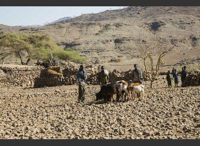 Äthiopische Kleinbauern aus der Wag-Hemra-Zone | © Helvetas / Fatoumata Diabate